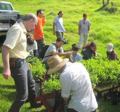 Hawaii vacationing volunteers prepare to plant native species on Mount Haleakala, Maui, Hawaii. Steffan Roth, foreground left.